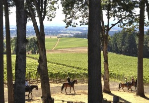 Horseback riding at Vista Hills Vineyard