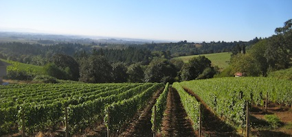 Wine Country Memorial Weekend