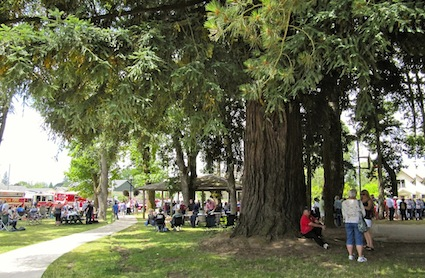 Old Timers Weekend & Dayton Fire District Barbecue @ Courthouse Square Park, Dayton, Oregon